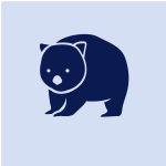 Sharn💗Handmade wombats&shoes